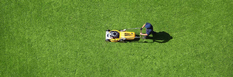 Bra Gräsklippare Bäst i Test